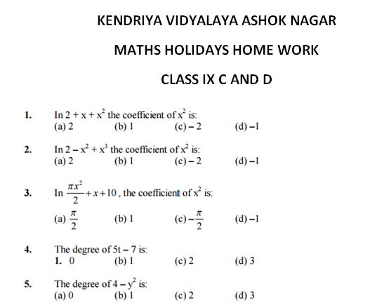 maths holiday homework for class 8