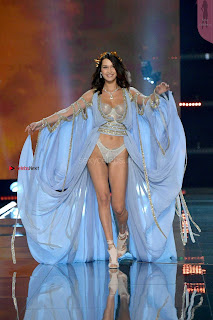 Bella-Hadid-at-2017-Victorias-Secret-Fashion-Show-11+%7E+SexyCelebs.in+Exclusive.jpg