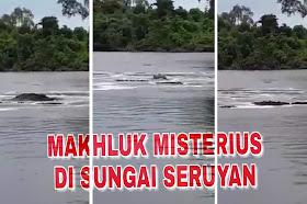 Heboh munculnya makhluk misterius di sungai Mitak Seruyan Kalimantan Tengah