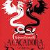 Lançamento: A Caçadora de Dragões de Kristen Ciccarelli