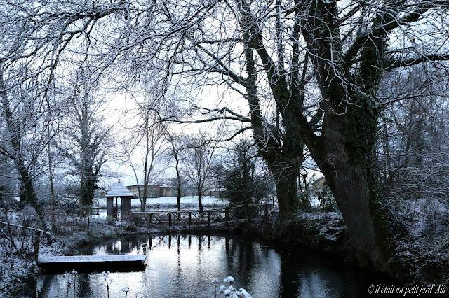 jardin et mare sous la neige