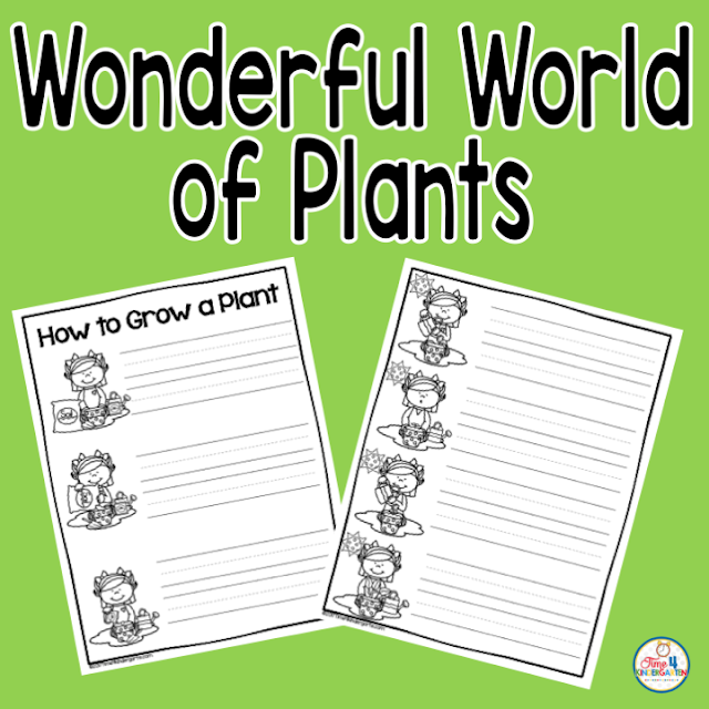 All about the wonderful world of plants.  2 Freebies to jumpstart your unit of plants for kindergarten