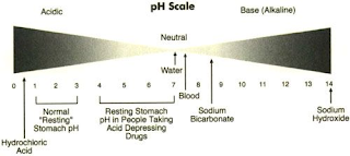 acids ,bases and ph