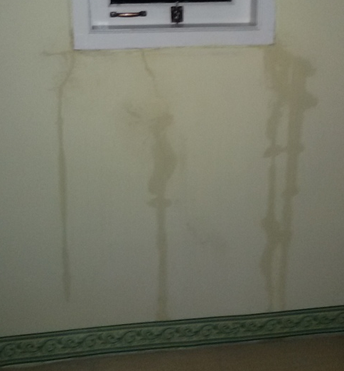 Ilustrasi Penyebab Dan Cara Mengatasi Dinding Rumah Yang Bocor