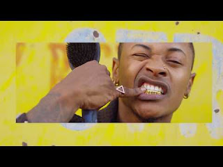 DOWNLOAD VIDEO: Priddy Ugly - Tshela