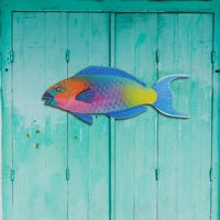 https://www.ceramicwalldecor.com/p/parrot-fish-metal-beach-wall-decor.html