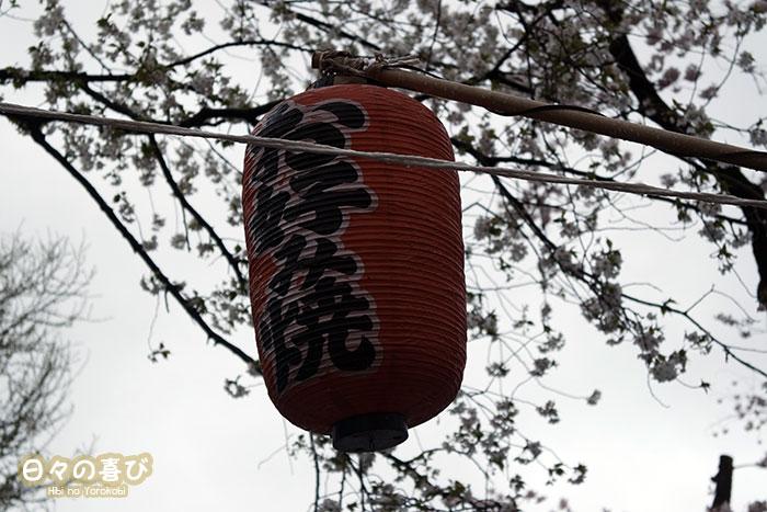 lampion dans les branches de sakura hanami ueno parc