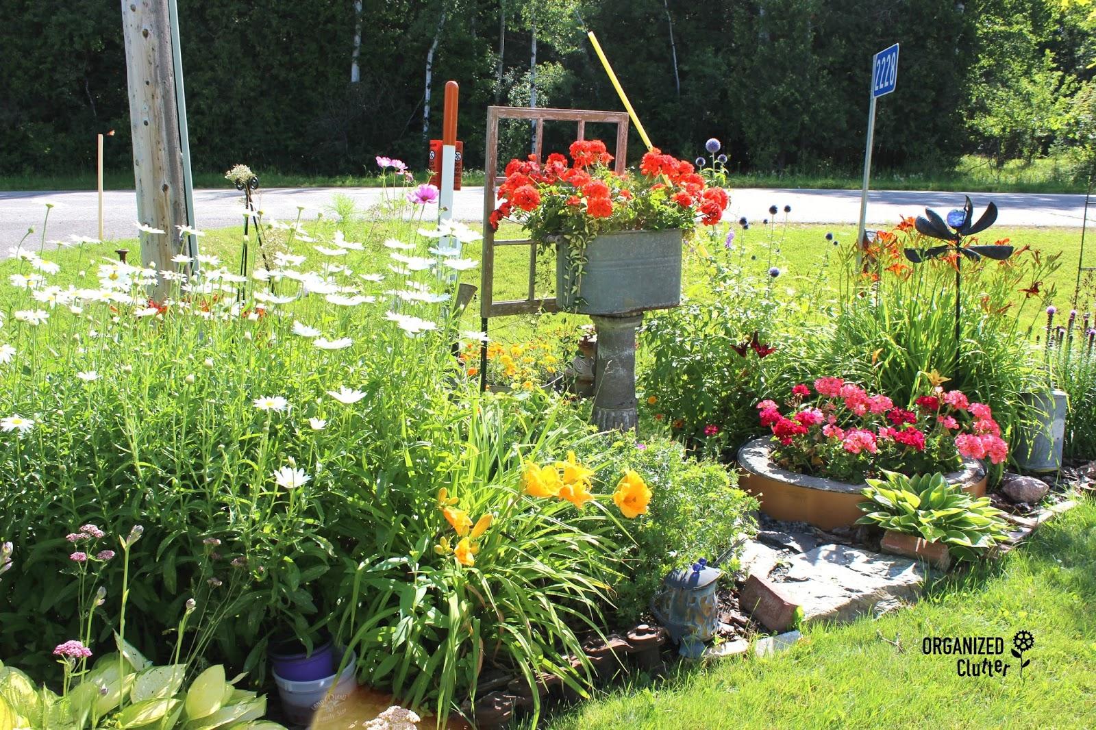 Organizedclutter   Yard Of Flowers  Garden Tour More