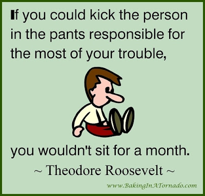 If you could kick the person in the pants Theodore Roosevelt quote | www.BakingInATornado.com | #parenting