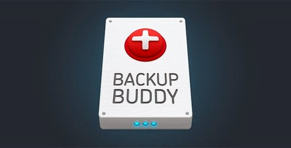 BackupBuddy Back up, restore and move - WordPress Plugin