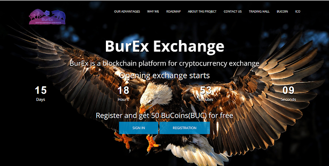 BurExExchange home page Screenshot