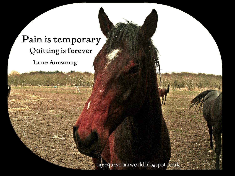 My Equestrian World: Motivational Monday