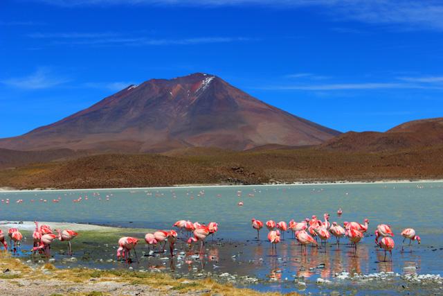 La Laguna Hedionda Norte, en Nor Lípez