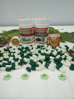 Mengobati Infeksi Sipilis Dengan Herbal