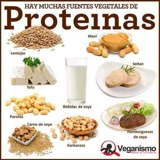 Como adelgazar por medio de la proteína