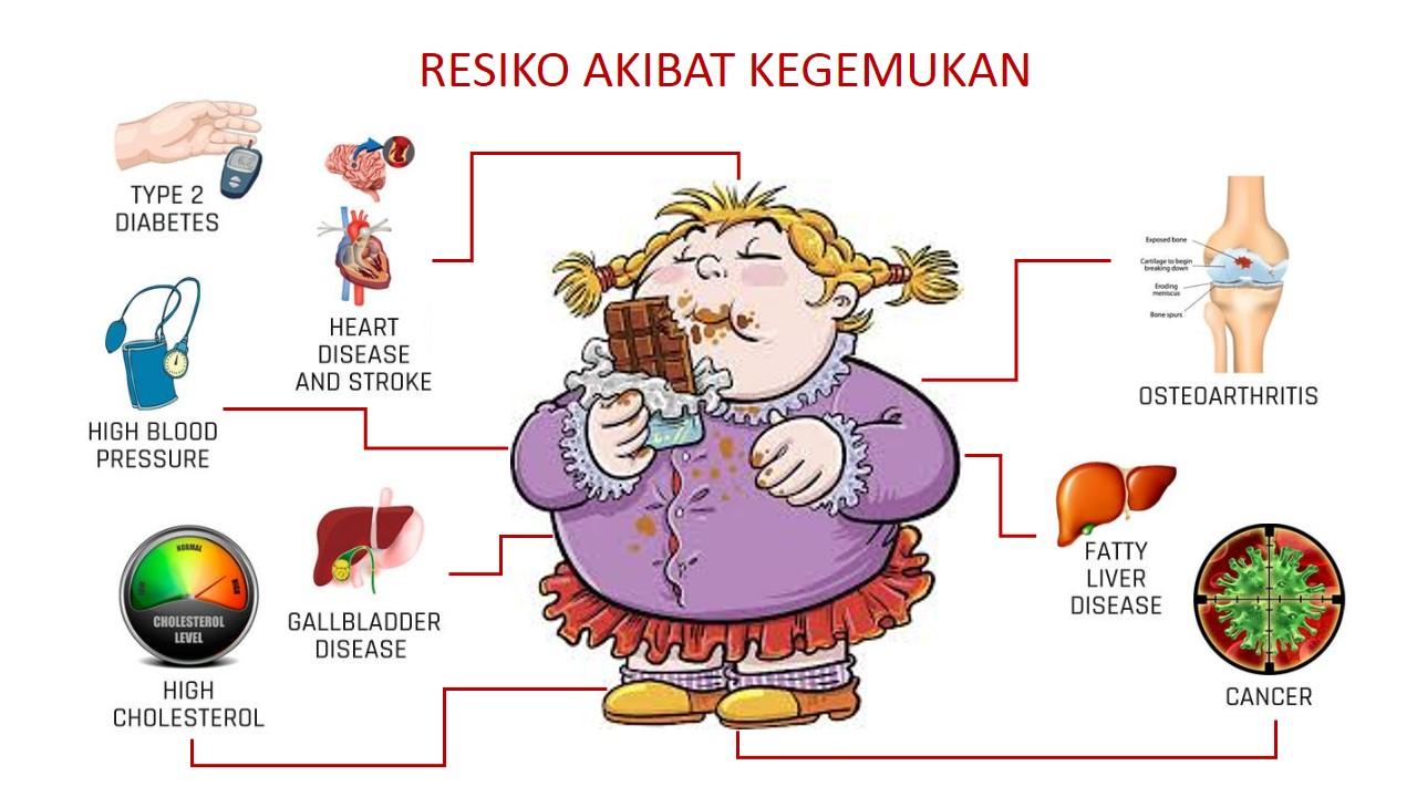 Yuk Jaga Pola Makan untuk Menghindari Resiko Kegemukan ...