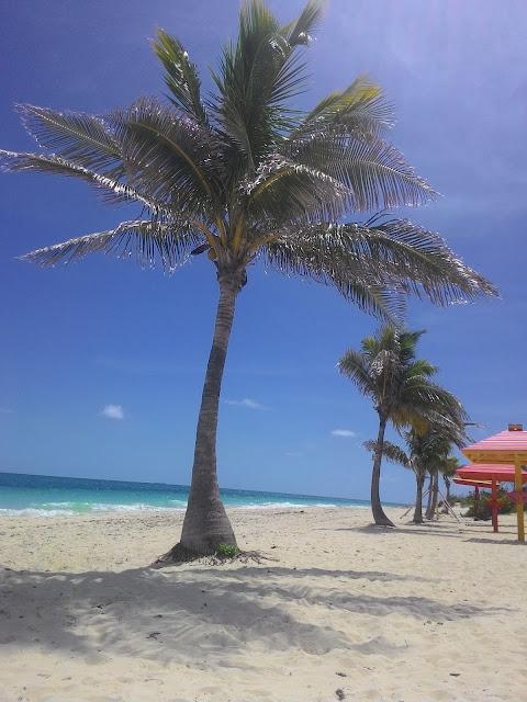 Plaża na Grand Bahama