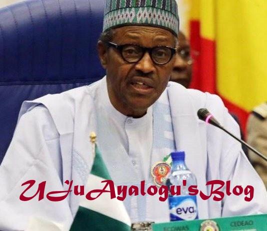 2019 presidency: Obasanjo declares support for Buhari, gives reason