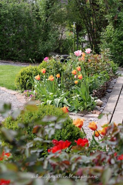 Ein Schweizer Garten LambadaBaby