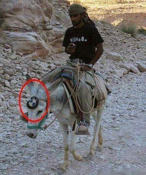 Funny Budget Man Riding Donkey BMW Joke Picture
