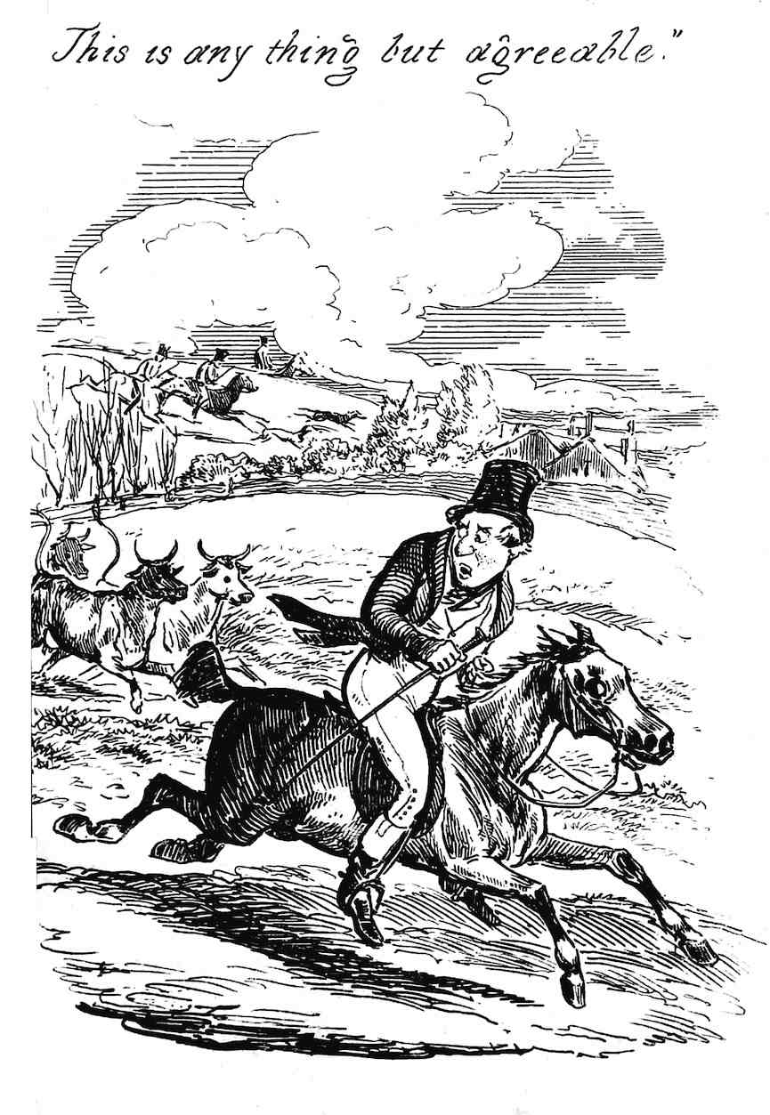 am 1800s Punch cartoon about fox hunting