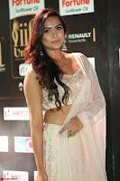 Prajna Actress in backless Cream Choli and transparent saree at IIFA Utsavam Awards 2017 0051.JPG