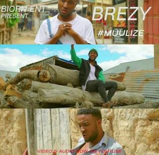 Brezy - Muulize