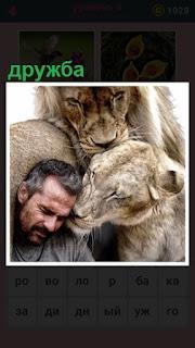 651 слов между мужчиной и хищными зверями дружба 8 уровень