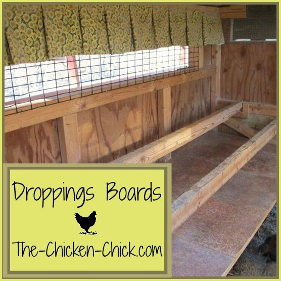 Add droppings boards underneath roosts to collect chicken poop generaated overnight, which removes the primary source of ammonia and moisture from the coop. Scrape boards down each morning and add them to a compost pile.