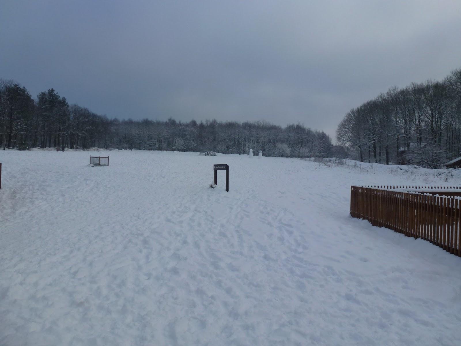 sherwood-pines-snow