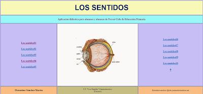 http://cplosangeles.juntaextremadura.net/web/cmedio5/los_sentidos/index.htm