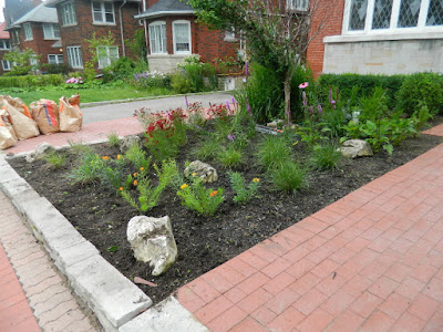 Avenue Road Toronto Front Garden Clean up After by Paul Jung Gardening Services