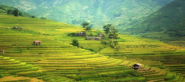 Best Stunning Places to Visit For Vietnam Vacation 6