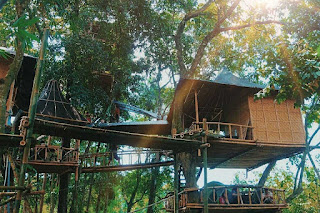 Exciting Vacation Exploring The Temega Treehouse, Very Natural