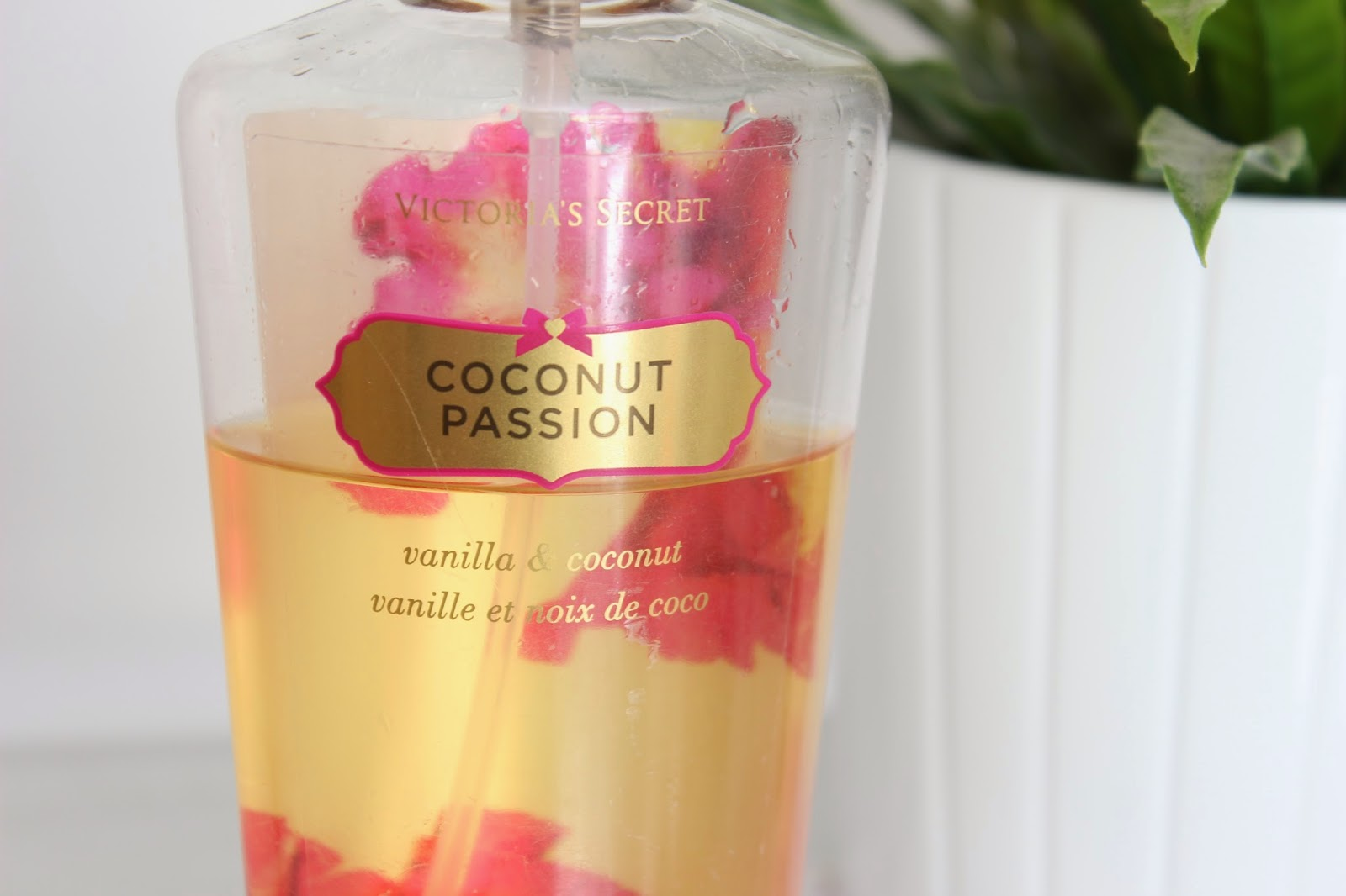 Victoria Secrets Coconut Passion Fragrance Mist // Review