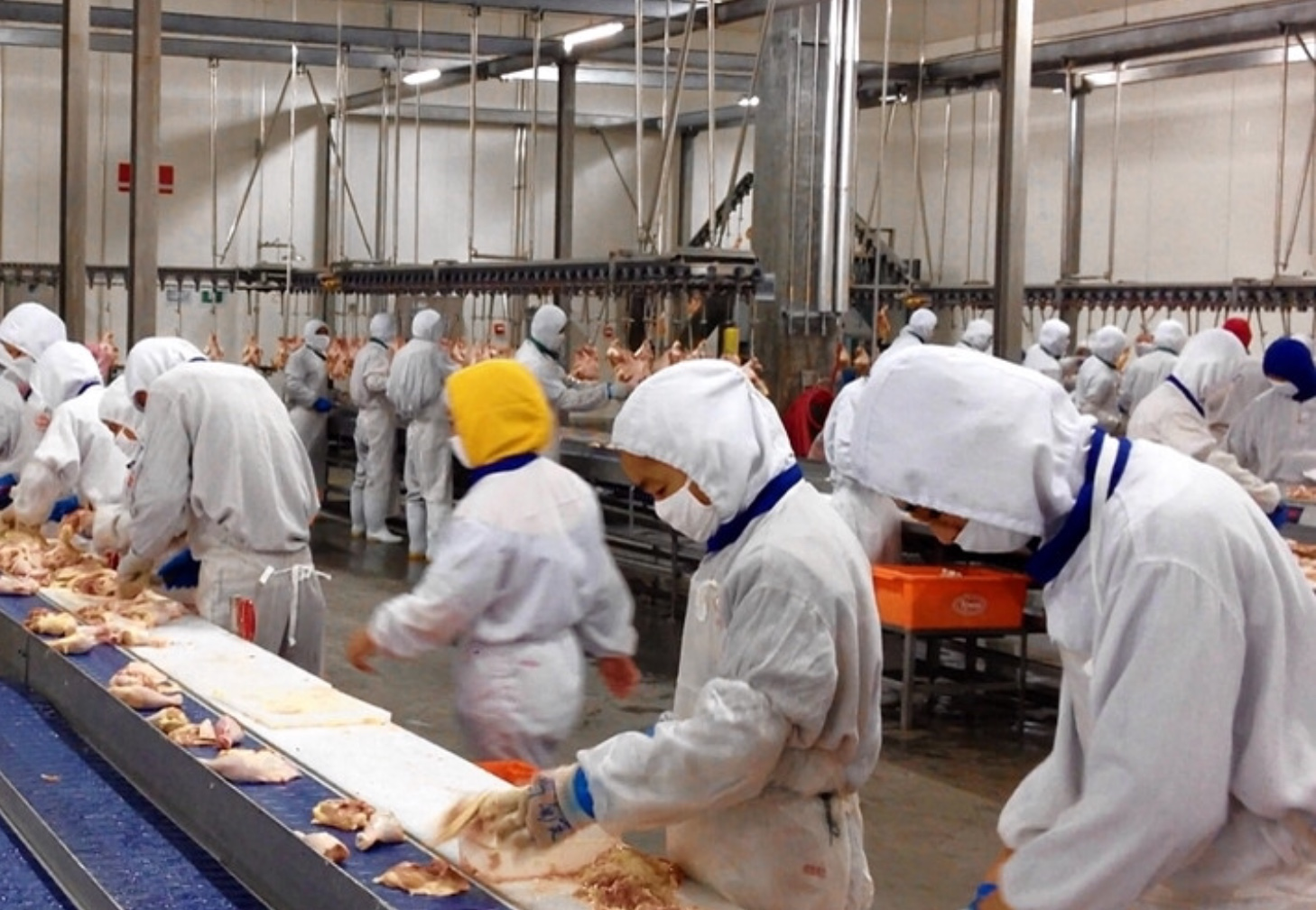 Taiwan Hiring: Factory Workers for Food company ~ PINOY