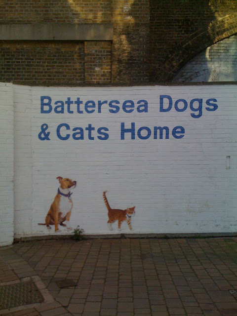 {ErinOutandAbout} Battersea Dogs and Cats Home
