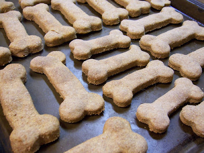 frugal dog recipes