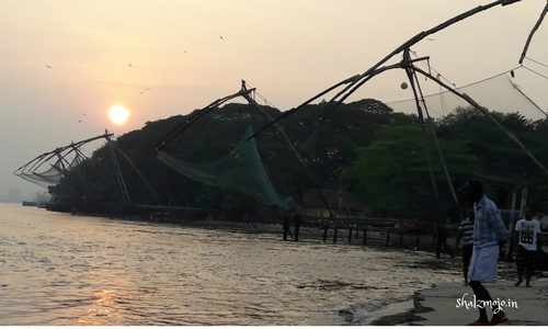 the famous Chinese fishing nets of Fort Kochi