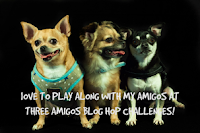 Three Amigos Blog Hop Challenges