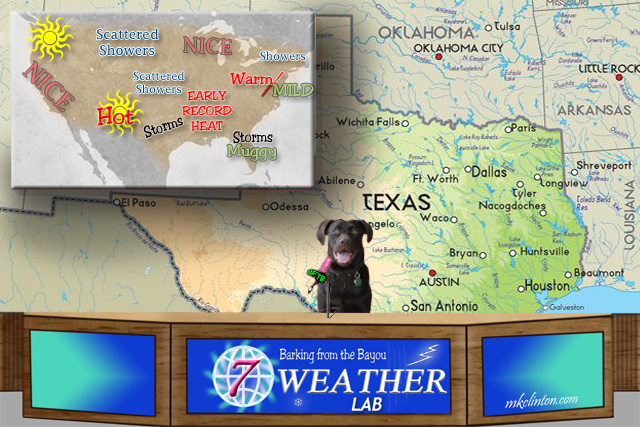 BFTB NETWoof Weather with dog