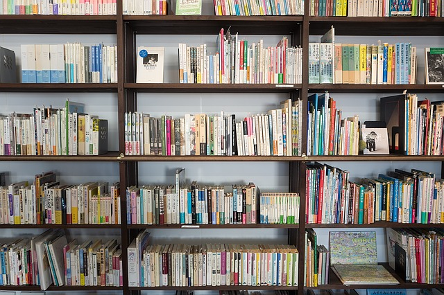 slowlingo, filologia, czy warto? studia, książki