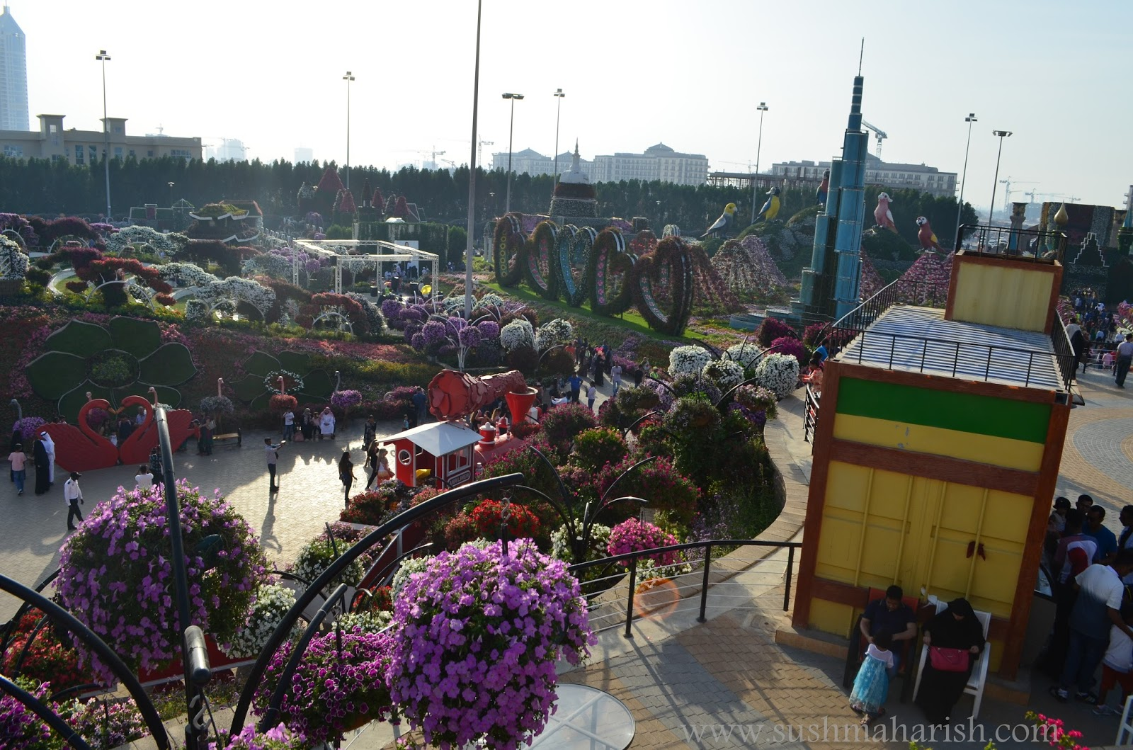 Exploring Beyond The Skyscrapers. Largest Flower Garden Of The World - Miracle Garden Dubai. 35