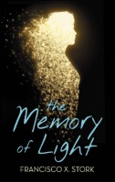 http://dreamingreadingliving.blogspot.fr/2018/01/the-memory-of-light.html