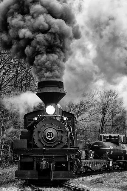 Shay #11 freight train At Cass Scenic Railway