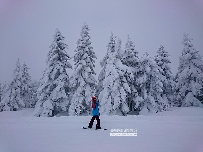 滑雪很難嗎,自助滑雪的問題,滑雪QA
