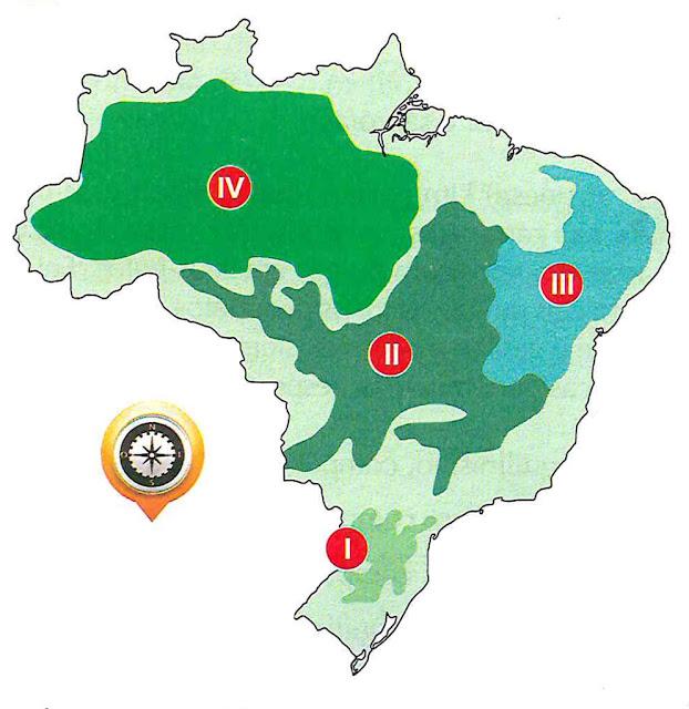 o-mapa-abaixo-indica-quatro-biomas-brasileiros