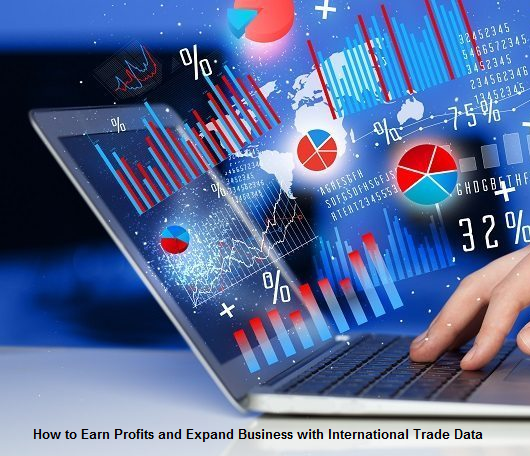How to Earn Profits and Expand Business with International Trade Data