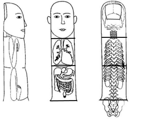 Su-jok acupuncture methods and treatment (Su-jok medicine