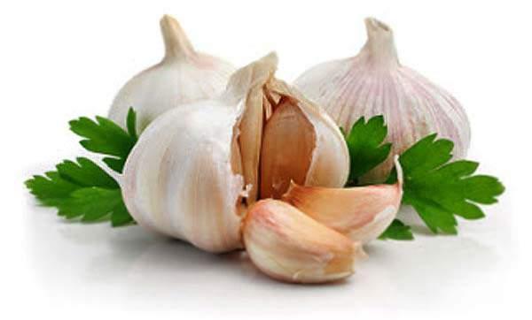 Khasiat kandungan dan manfaat bawang putih